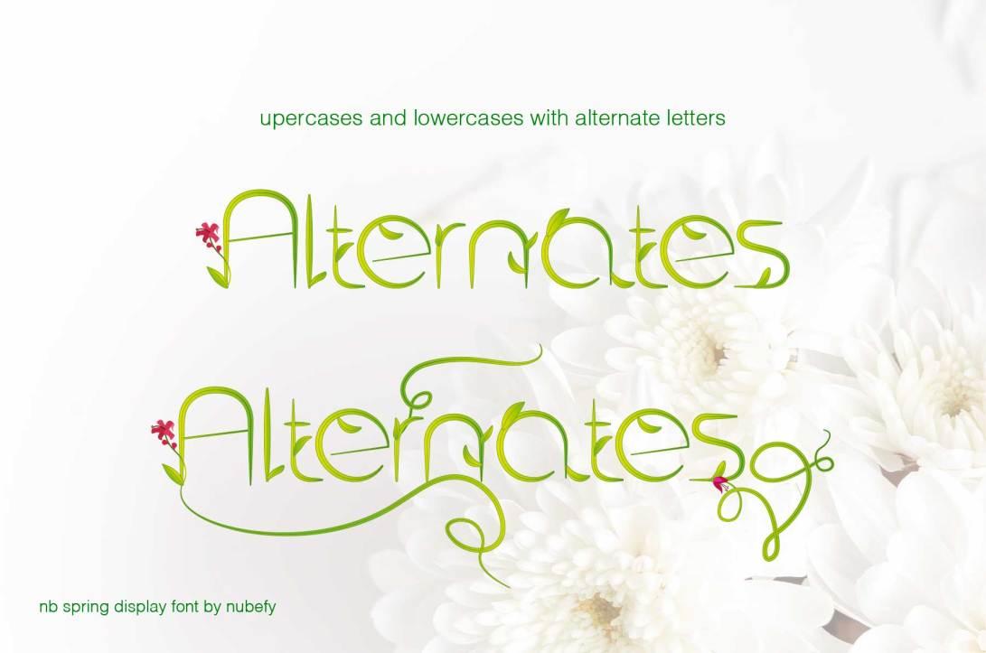 3-nb-alternates-spring