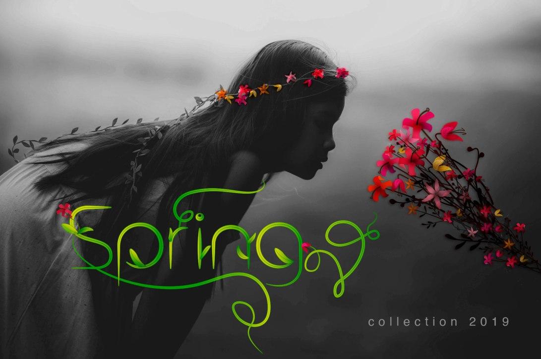 nb-capa-spring